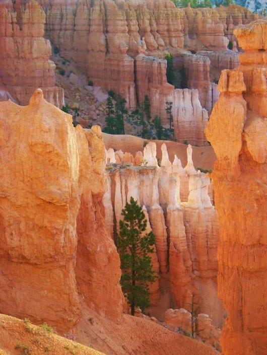 canyon utah red sand