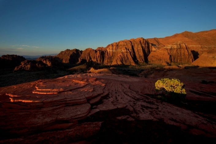 canyon in utah red sand