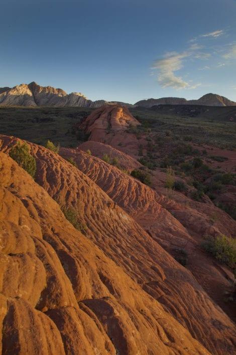 utah red brick landscape